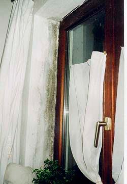 pilzbehandlungen f r wohnungen daniel kneub hler malergesch ft. Black Bedroom Furniture Sets. Home Design Ideas